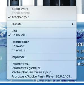 Aperçu d'un menu Flash dans un navigateur Internet